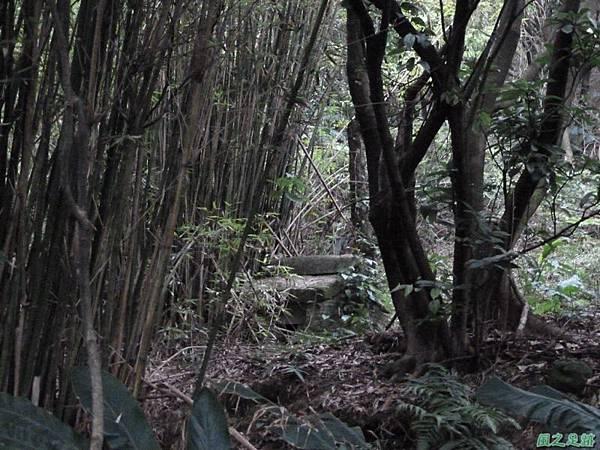 東北角山行20140419(264)
