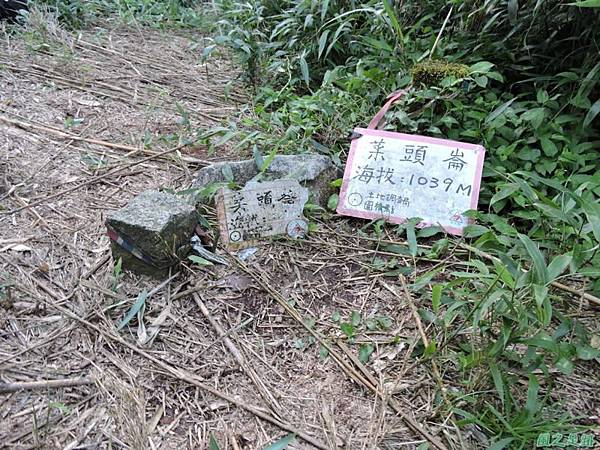 菜頭崙20140524(3)
