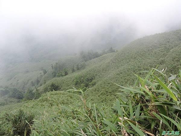 小觀音山火山口20140524(8)