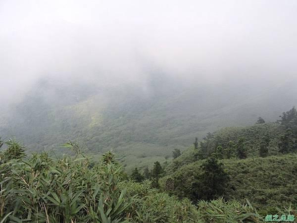 小觀音山火山口20140524(12)