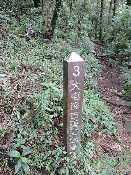 小觀音山火山口20140524(18)