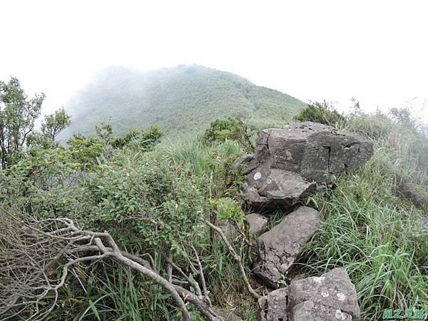 小觀音山環行20140524(147)