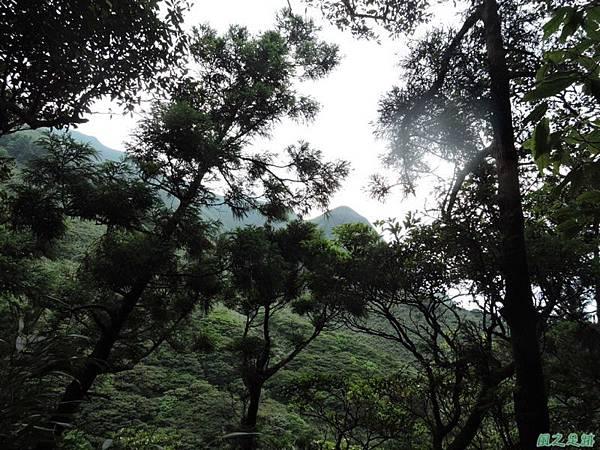 小觀音山環行20140524(170)