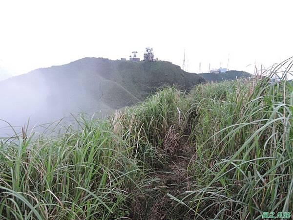小觀音山環行20140524(216)