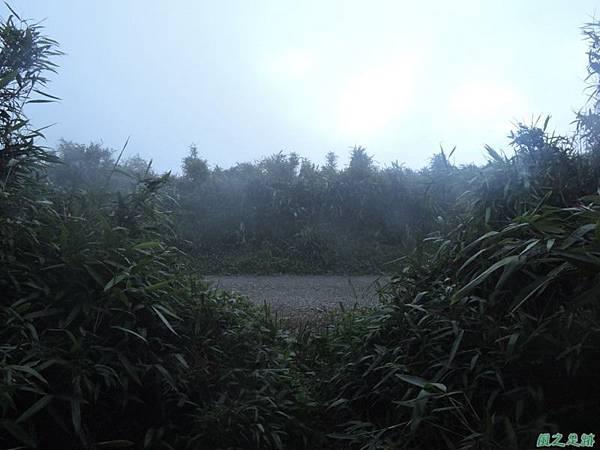 小觀音山環行20140524(290)