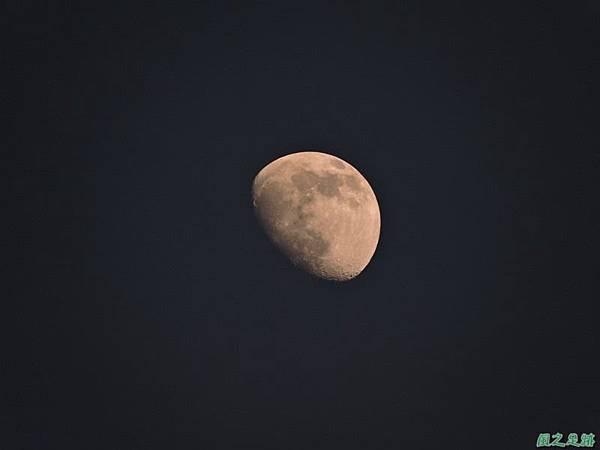 黃昏樓頂賞月20140708(23)