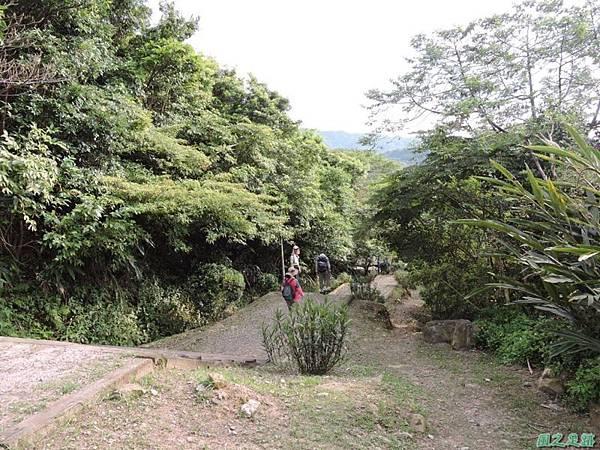 二叭子植物園20140713(41)