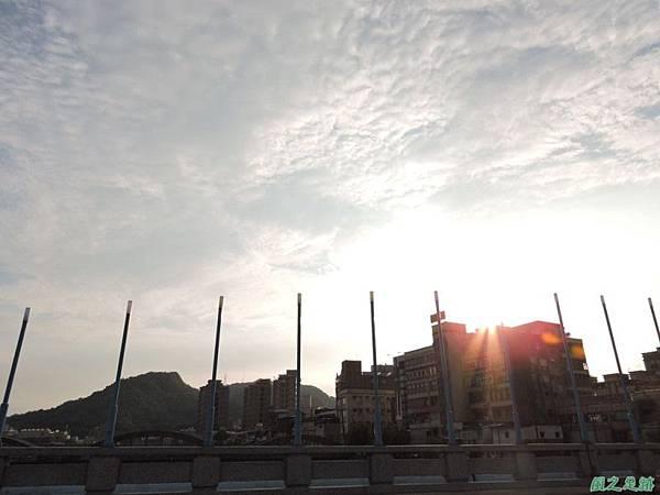 二叭子植物園20140713(50)