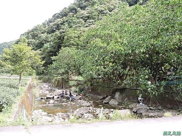 虎寮潭山20140705(13)