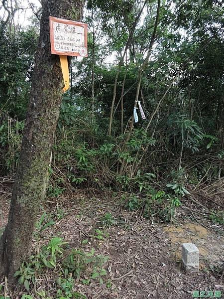 虎寮潭山20140705(69)