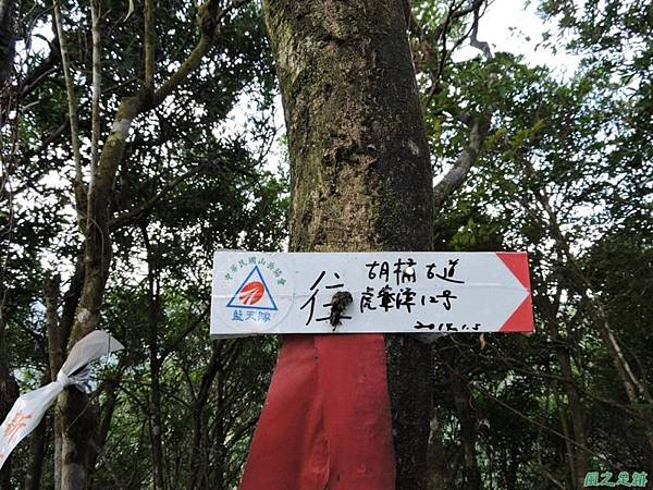 虎寮潭山20140705(70)