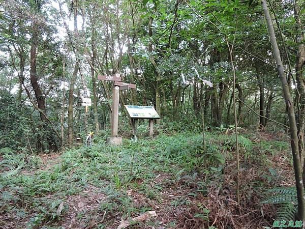 虎寮潭山20140705(79)