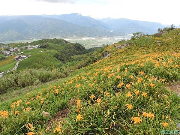 20140819六十石山(121)