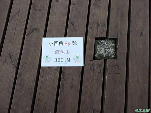 20140818花蓮鯉魚山 (24)
