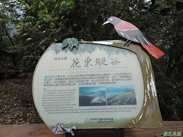 20140818花蓮鯉魚山 (35)