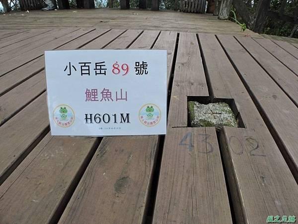 20140818花蓮鯉魚山 (45)
