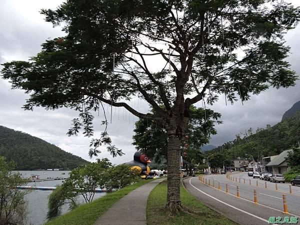 20140818花蓮鯉魚山 (86)