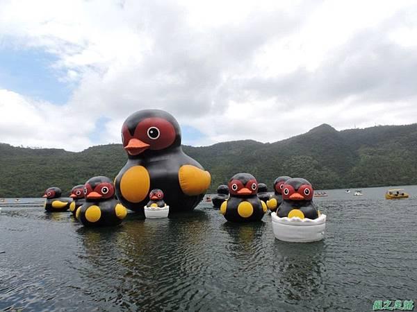 20140818花蓮鯉魚山 (95)