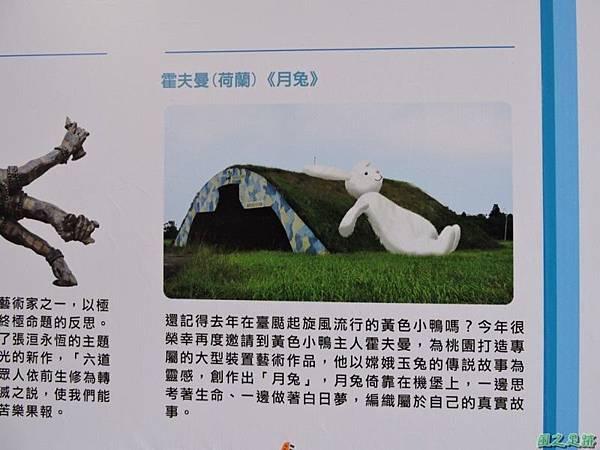 桃園地景藝術節(85)