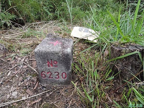 20140906婆羅山(36)