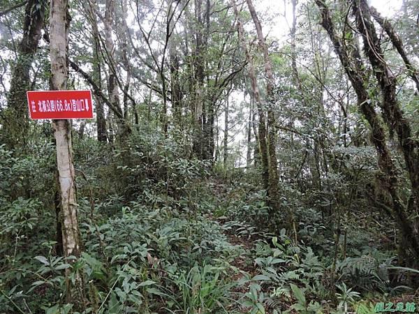 20140906婆羅山(46)
