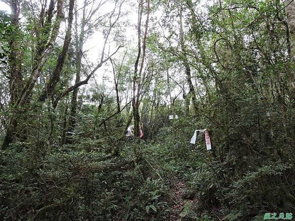 20140906婆羅山(48)