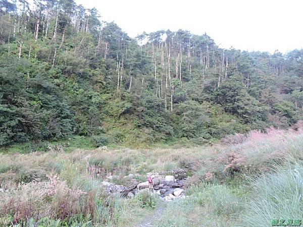 羅葉尾山20140907(7)