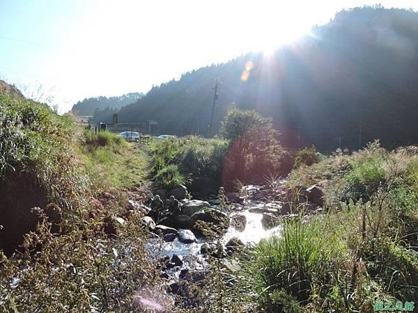 羅葉尾山20140907(20)