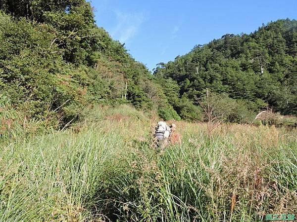 羅葉尾山20140907(23)