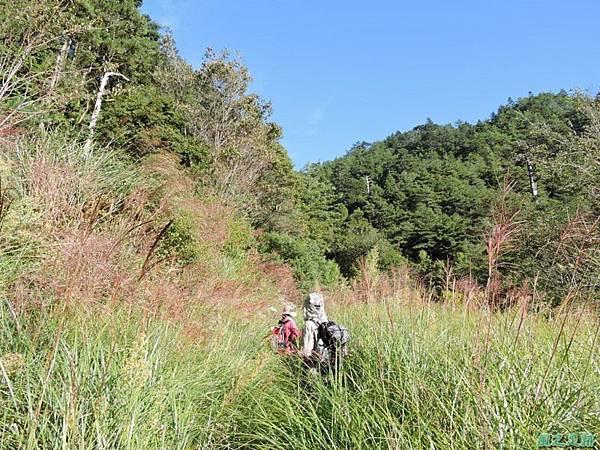 羅葉尾山20140907(25)