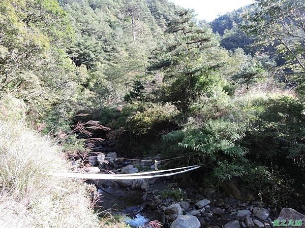 羅葉尾山20140907(26)