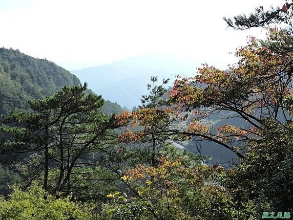羅葉尾山20140907(40)