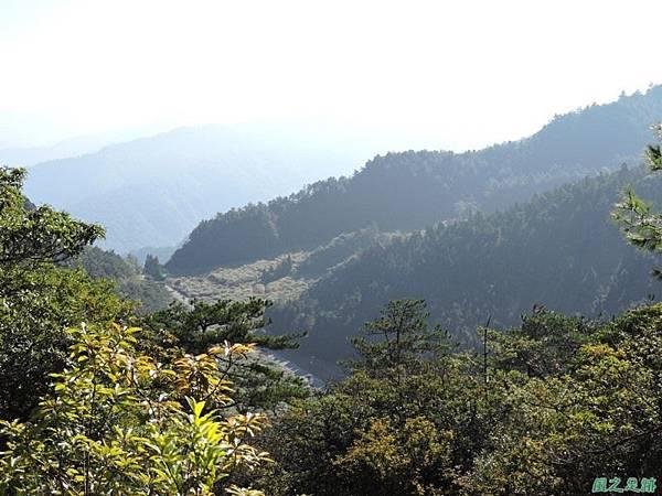 羅葉尾山20140907(41)