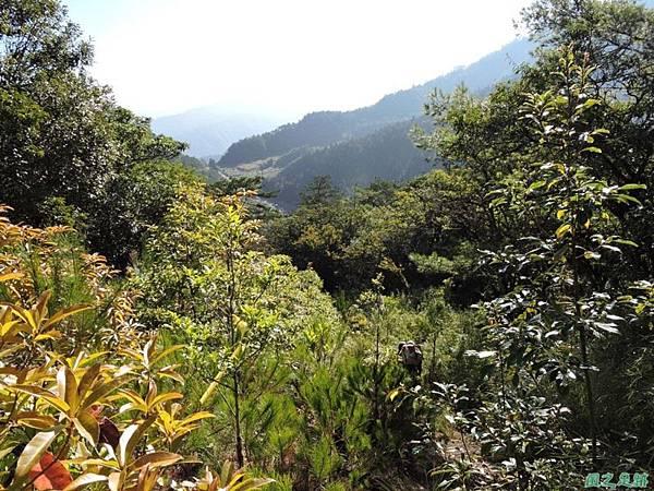 羅葉尾山20140907(42)