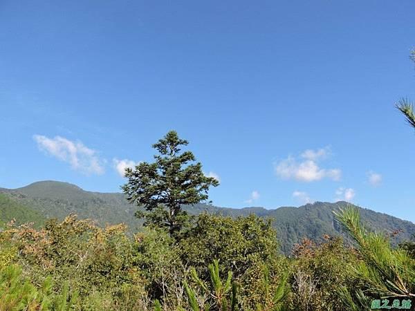 羅葉尾山20140907(47)