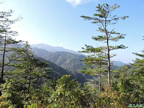羅葉尾山20140907(52)