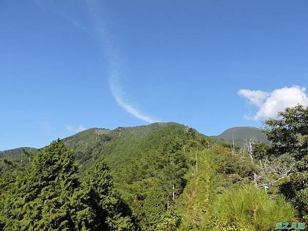 羅葉尾山20140907(55)