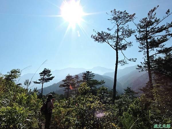 羅葉尾山20140907(56)