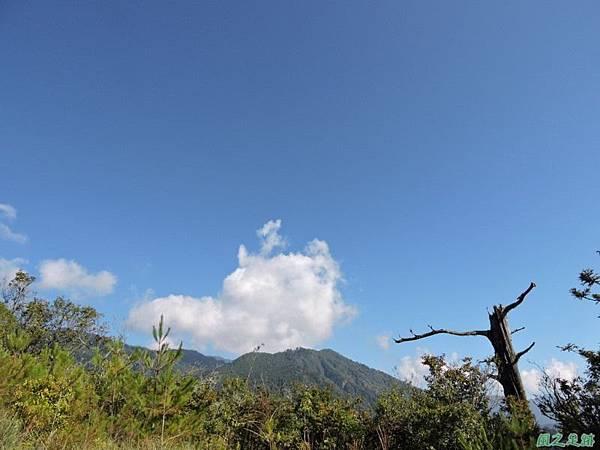 羅葉尾山20140907(61)