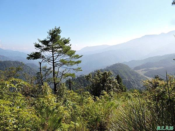 羅葉尾山20140907(73)