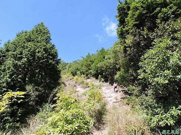 羅葉尾山20140907(91)