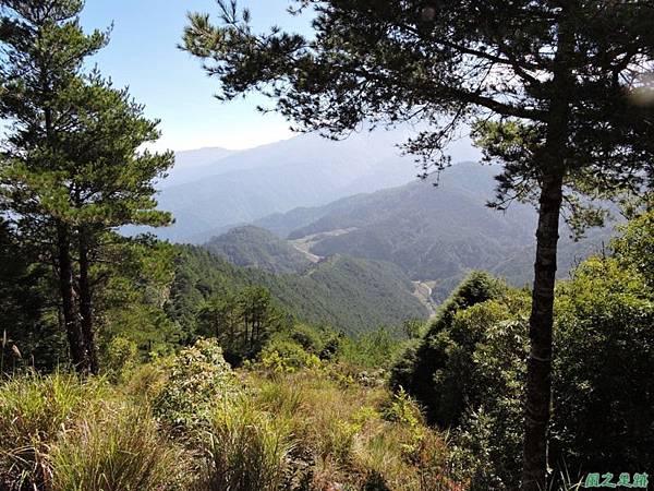 羅葉尾山20140907(100)
