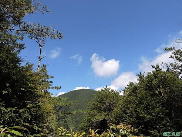 羅葉尾山20140907(107)