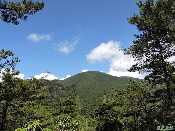 羅葉尾山20140907(108)
