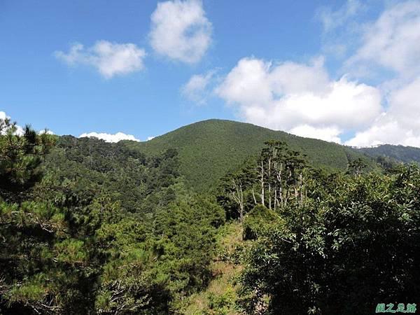 羅葉尾山20140907(110)
