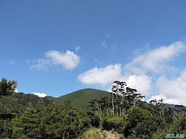 羅葉尾山20140907(112)