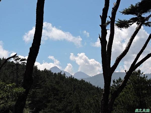 羅葉尾山20140907(118)