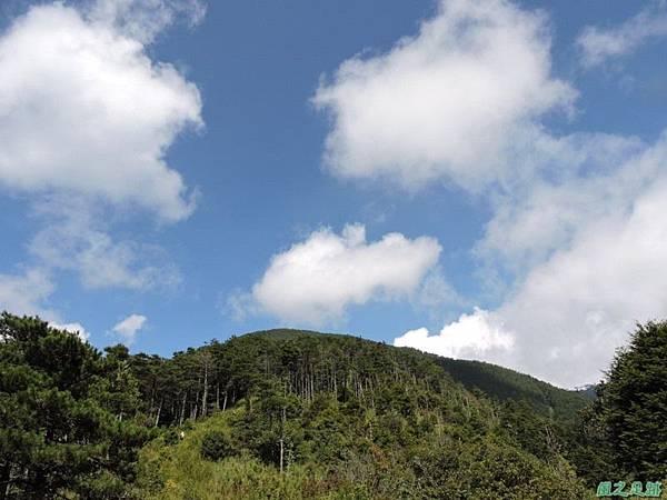 羅葉尾山20140907(119)