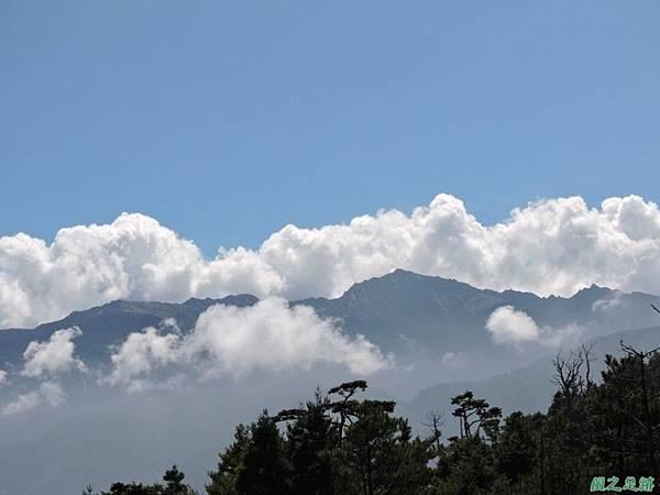 羅葉尾山20140907(123)