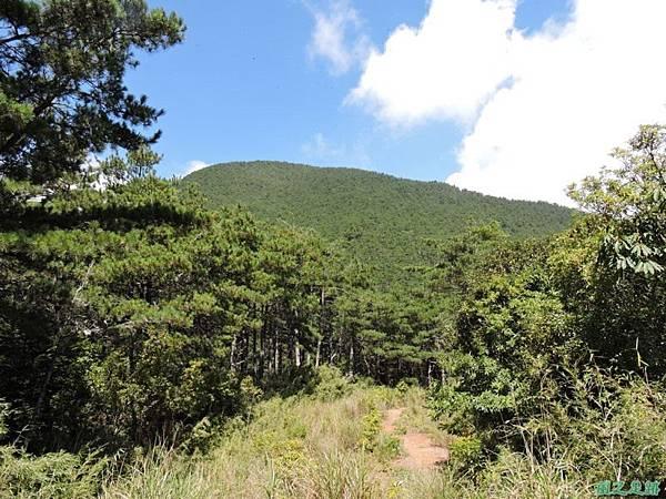 羅葉尾山20140907(126)